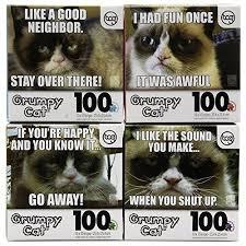 Grumpy Cat Meme I Had Fun Once - set of 4 official grumpy cat 100pc jigsaw puzzles funny meme kids