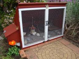 Backyard Chickens Forum by Http Www Backyardchickens Com Forum Uploads 73368 Dsc01589 Jpg