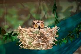 wow said the owl home