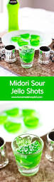 262 best jello shots and alcoholic drinks images on pinterest