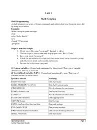 cl205 lab2 command line interface scripting language