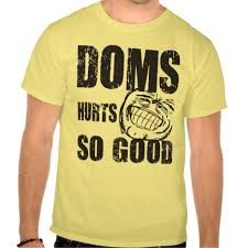 Gym Meme Shirts - doms hurts so good funny gym meme shirt funny stuff i seen