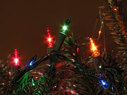 up of lights on a tree free stock photo