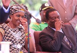 Challenge Vice Mugabe Faces Challenge As Sacked Vice President Gathers Support