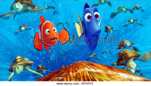 dory finding nemo stock photos u0026 dory finding nemo stock images