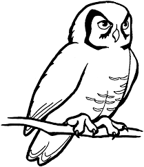 owl cliparts body free download clip art free clip art on
