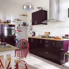 cuisine aubergine et gris meuble de cuisine violet delinia leroy merlin