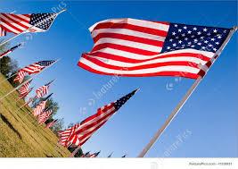 Flag Displays Celebration American Flag Display In Honor Of Veterans Day
