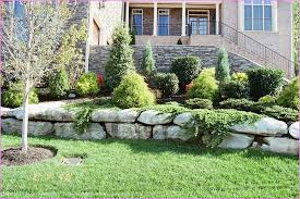 No Grass Landscaping Ideas Front Yard Landscaping Ideas No Grass Home Design Ideas