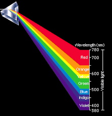 What Color Of Visible Light Has The Longest Wavelength Human Beings Can Perceive Specific Wavelengths As Colors Part