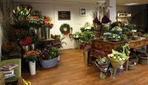 floral shops orchid des moines florist des moines flower shops about