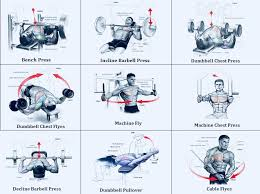 bench routines weight exercise routines and workouts ripped fit