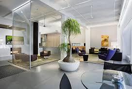 apartment plants 99 great ideas to display houseplants indoor plants decoration