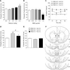 nucleus accumbens ampa receptors are necessary for morphine download figure