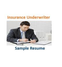 Insurance Underwriter Resume Sample by Underwriter Resume Mela