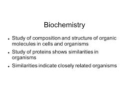 embryology and biochemistry evidence of evolution embryology the