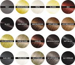 hair color chart interesting hair spray for finally hair color chart brown black