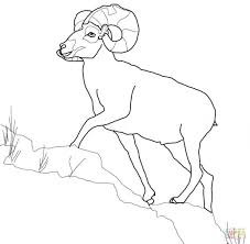 shaun sheep coloring pages free lost minecraft sheets