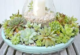 succulent centerpieces succulent candle centerpiece throughout succulent centerpieces diy