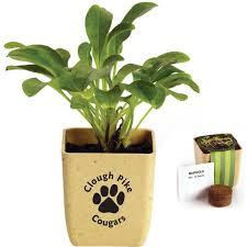 personalized flower pot custom ceramic flower pot mug usimprints