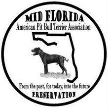 american pitbull terrier merchandise mid florida american pit bull terrier club