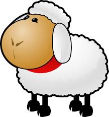 sheep coloring pages copy kids cute coloring pages clip art