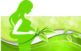 pregnant woman with elegant background 01 free u2013 over millions