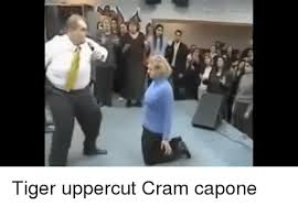 Uppercut Meme - 25 best memes about tiger uppercut tiger uppercut memes