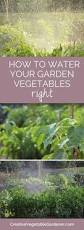 marigolds in the vegetable garden yes vegetables scribble and