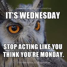 Wednesday Meme Funny - wednesday memes it s wednesday stop acting like you think you re
