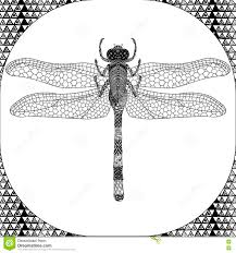 coloring page of balck dragonfly zentangle illustartion stock