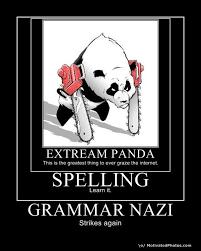 Grammer Nazi Meme - extream panda grammar nazi know your meme