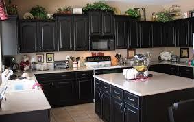 Black Cabinet Kitchen Black Kitchen Cabinet