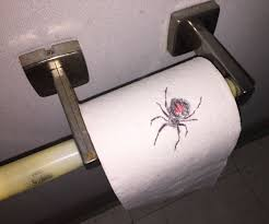 spider on toilet paper prank with pictures