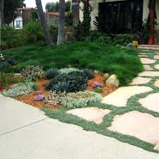 Front Yard Landscaping Ideas Without Grass Landscaping Ideas For Small Front Yard Without Grass Find This Pin