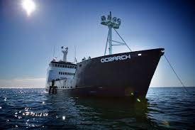 researchers search for u0027timid u0027 great whites off cape cod wbur