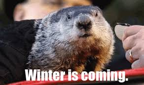Groundhog Meme - groundhog day meme pandawhale winter is coming pinterest