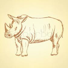 rhino african animal isolated sketch black rhinoceros wild mammal