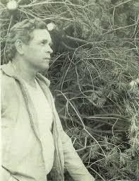 about sloan nursery u0026 christmas trees