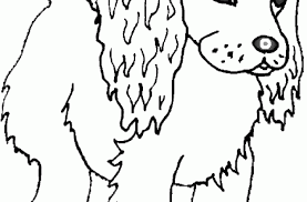 puppy coloring cute cocker spaniel lots dog