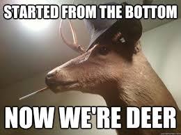 Oh Deer Meme - oh yes deer puns yes misc quickmeme