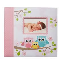 Pretty Photo Albums Papercrafting Albums U0026 Refills Michaels