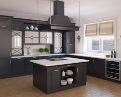 kitchen simple kitchen design with l shaped dark kitchen cabinet
