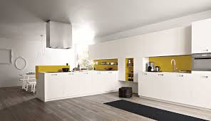 green and yellow modern kitchen ideas with combination excerpt