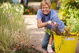 Botanical Gardens Volunteer by Volunteer Opportunities Chadwick Arboretum U0026 Learning Gardens