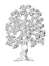 coloring pages for adults tree free tree coloring pages free printable tree coloring pages for kids