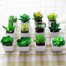 small potted plants simulation succulents small potted plants bonsai mini creative