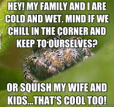 Sad Spider Meme - hey my family and i are cold and wet mind if we chill in the