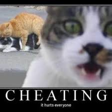 Cheater Meme - cheater memes cheatermemes twitter