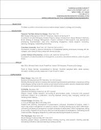 Sample Profiles For Resumes by Profile Resume Examples